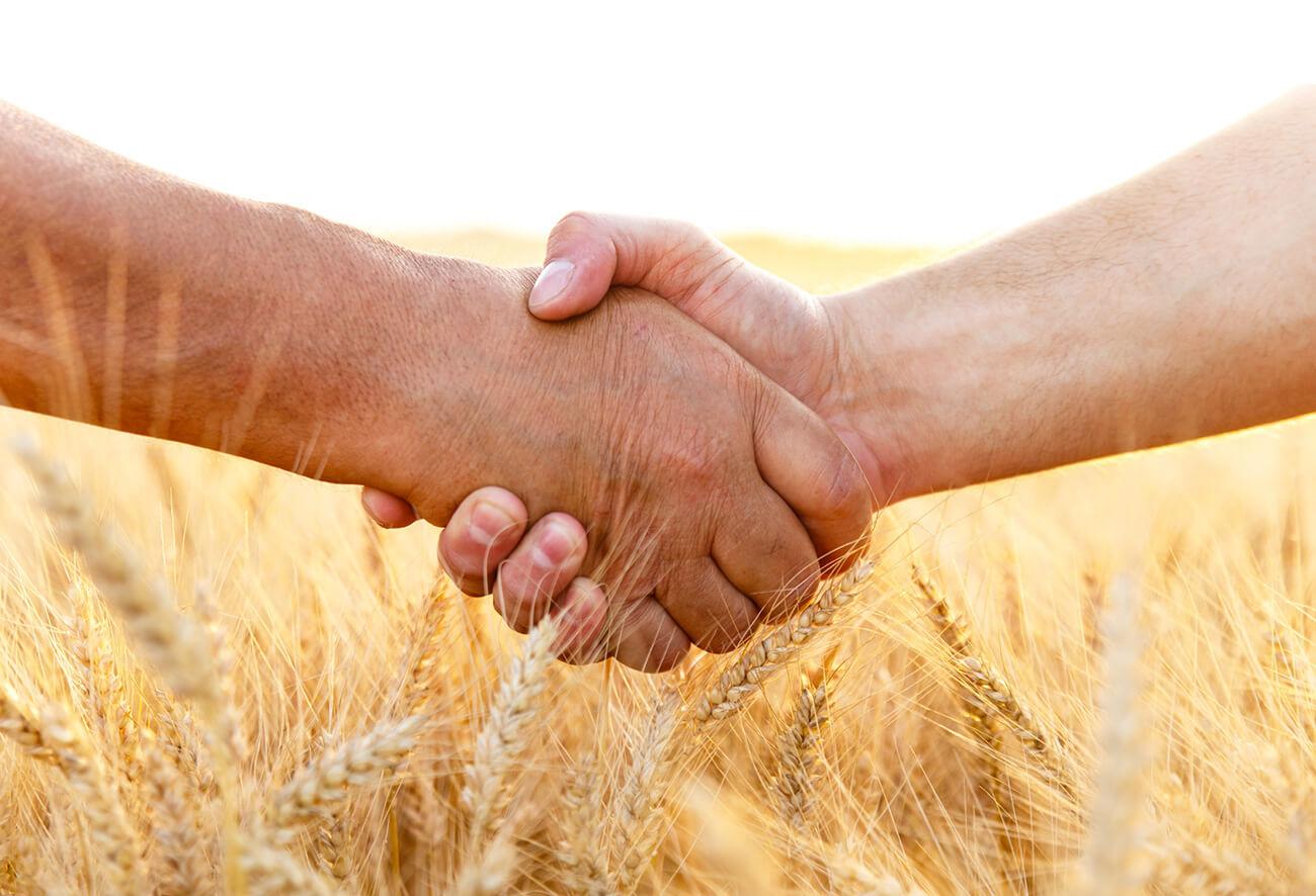 Landwirte geben sich die Hand